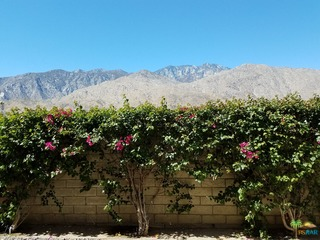 1655 E Palm Canyon Dr #317, Palm Springs, CA 92264