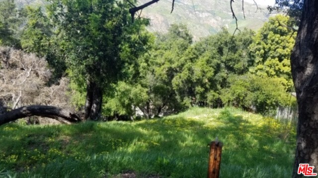 26247 FAIRSIDE RD, MALIBU, California 90265, ,Land,For Sale,FAIRSIDE,19-464182