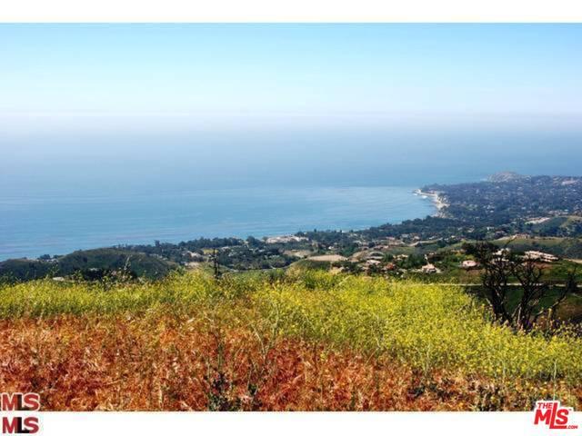 0 Latigo, MALIBU, California 90265, ,Land,For Sale,Latigo,19-480040