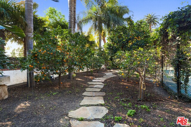 23155 MARIPOSA DE ORO ST, MALIBU, California 90265, 5 Bedrooms Bedrooms, ,6 BathroomsBathrooms,Residential,For Sale,MARIPOSA DE ORO,19-497658