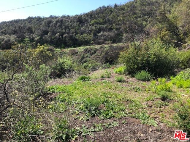 0 Baller Motorway, MALIBU, California 90265, ,Land,For Sale,Baller Motorway,19-519604
