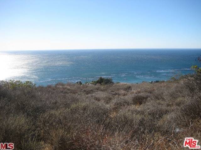 32838 Camino De Buena Ventura, MALIBU, California 90265, ,Land,For Sale,Camino De Buena Ventura,20-561374