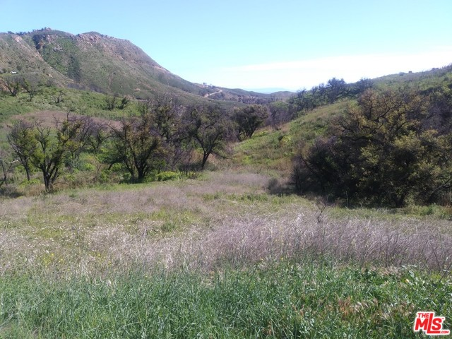 2517 Encinal Canyon RD, MALIBU, California 90265, ,Land,For Sale,Encinal Canyon,20-562330