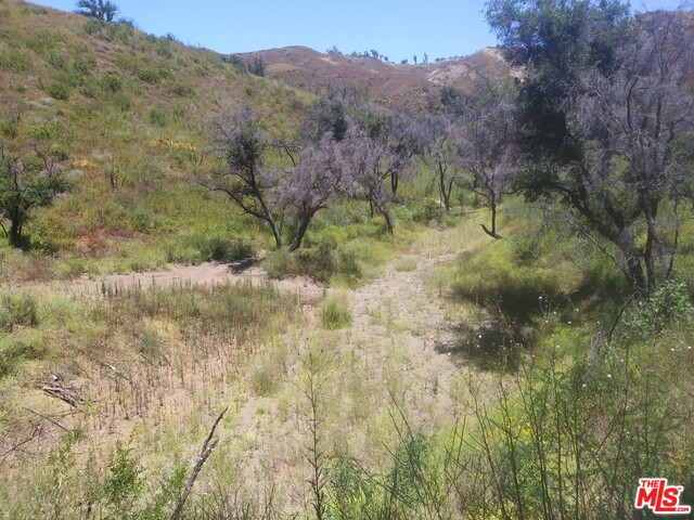 2580 Encinal Canyon RD, MALIBU, California 90265, ,Land,For Sale,Encinal Canyon,20-583264